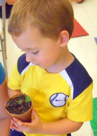 Phipps Science Education (123)
