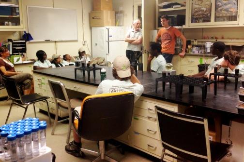 Phipps Internship Tonsor Lab Botany