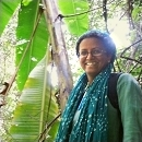 anita varghese Phipps Botany in Action science education research