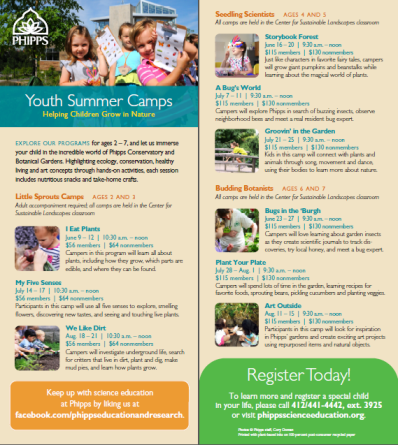 summer camp rack card