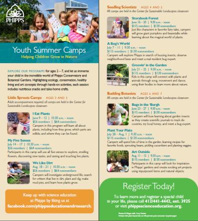 summer camp rack card